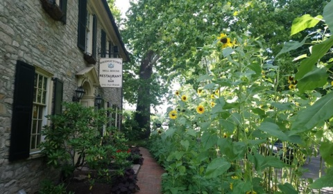 Summer at Bridgetown Mill House